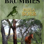 The Brumbies series, Paula Boer